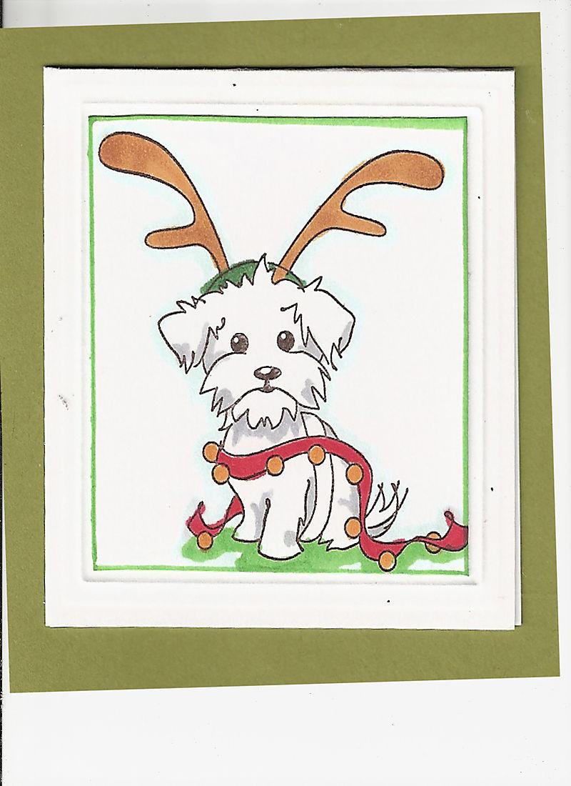 Reindeer Dog 1