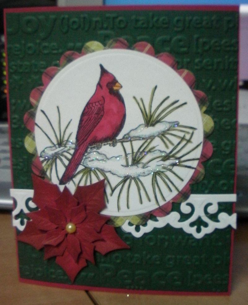 Christmas cardinal - Maggies